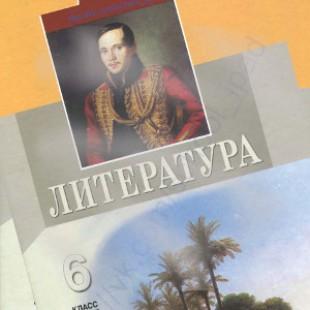 Литература 6 класс Снежневская
