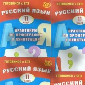Русский язык 11 класс Практикум по орфографии и пунктуации Драбкина