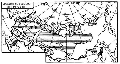 Из какой природной зоны в какую переместится путешественник, совершивший перелет по маршруту A-В, показанному на карте России?