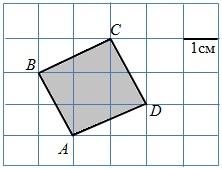 Найдите площадь квадрата ABCD. Размер каждой клетки 1 см × 1 см. Ответ дайте в квадратных сантиметрах.